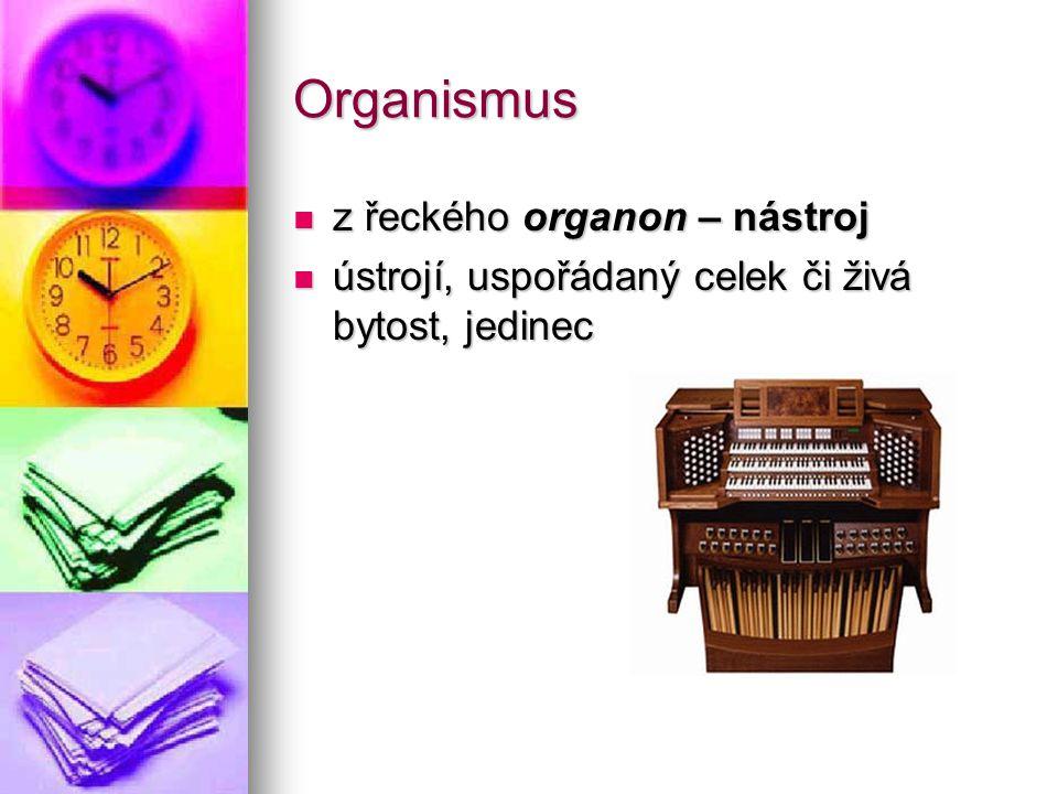 Organismus z řeckého organon – nástroj
