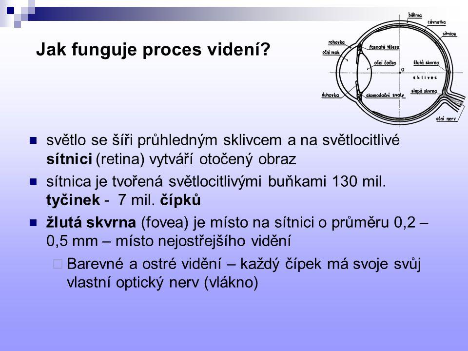 Jak funguje proces videní