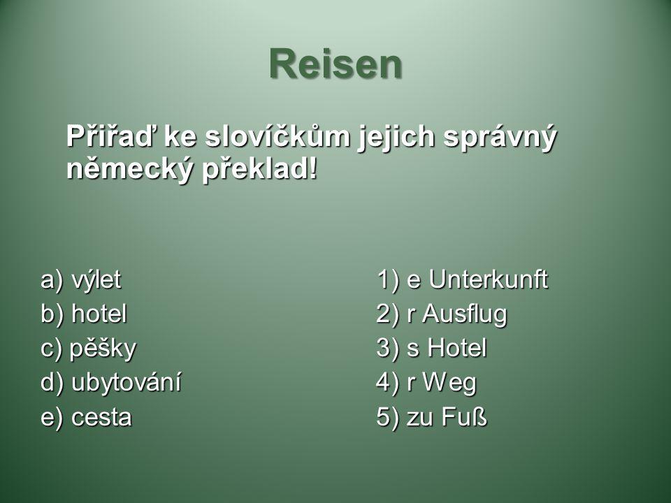 Reisen Přiřaď ke slovíčkům jejich správný německý překlad!