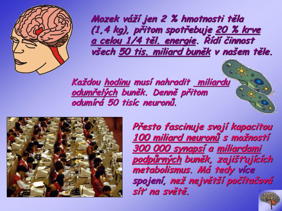 Mozek váží jen 2 % hmotnosti těla (1,4 kg), přitom spotřebuje 20 % krve a celou 1/4 těl. energie. Řídí činnost všech 50 tis. miliard buněk v našem těle.