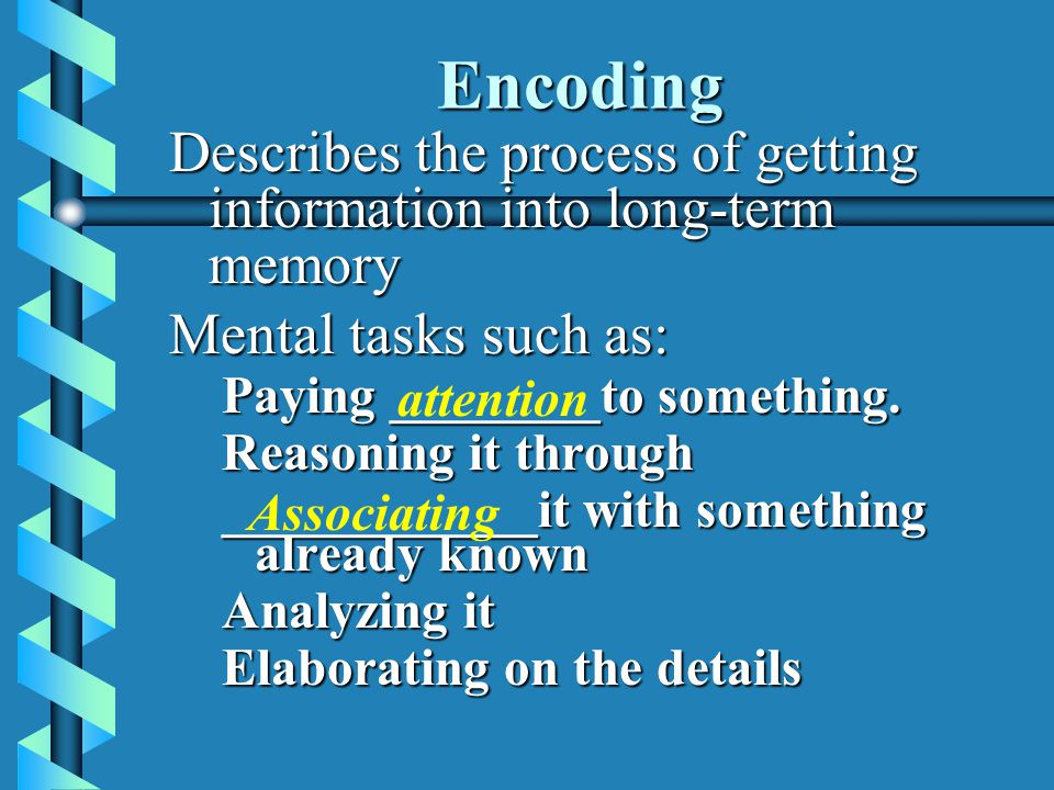Encoding Describes the process of getting information into long-term memory. Mental tasks such as: