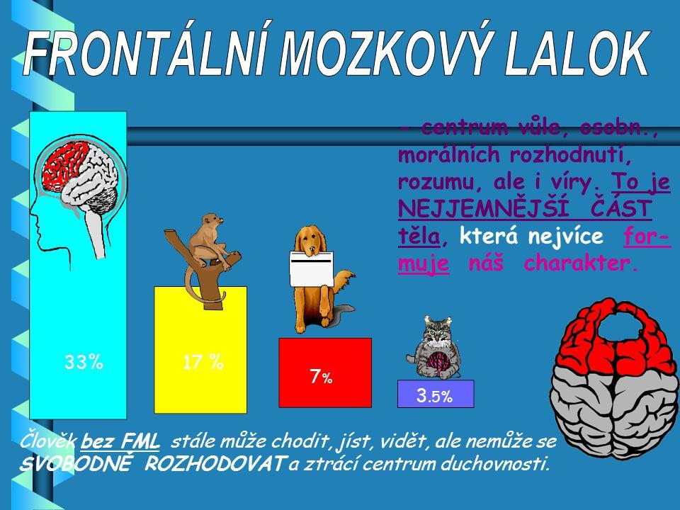 FRONTÁLNÍ MOZKOVÝ LALOK