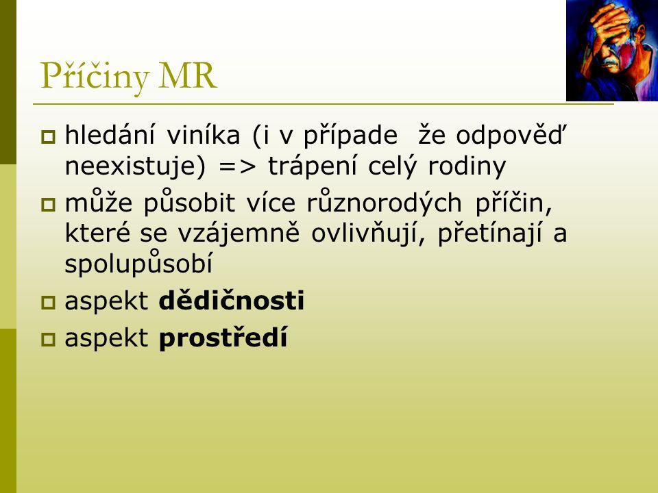 Příčiny MR hledání viníka (i v případe že odpověď neexistuje) => trápení celý rodiny.