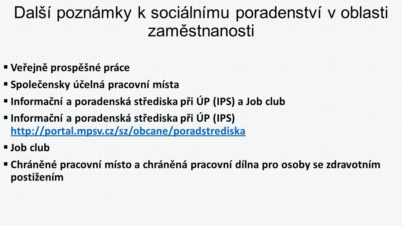 Další poznámky k sociálnímu poradenství v oblasti zaměstnanosti