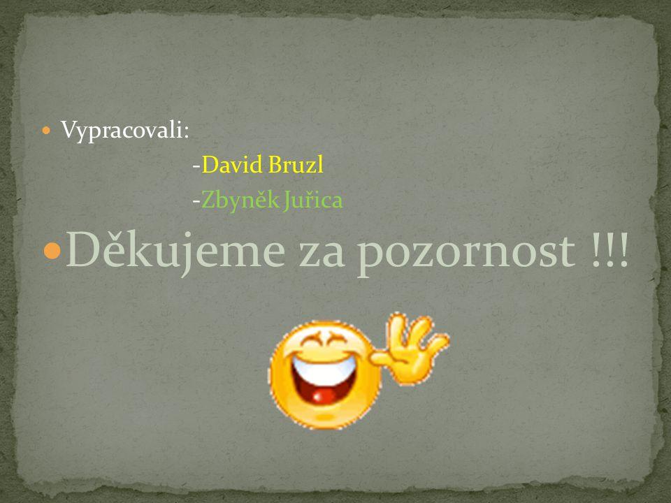 Vypracovali: -David Bruzl -Zbyněk Juřica Děkujeme za pozornost !!!