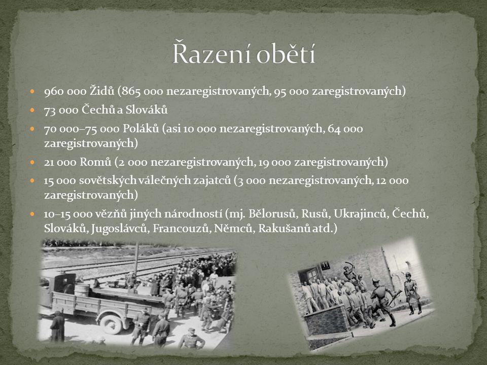 Řazení obětí 960 000 Židů (865 000 nezaregistrovaných, 95 000 zaregistrovaných) 73 000 Čechů a Slováků.
