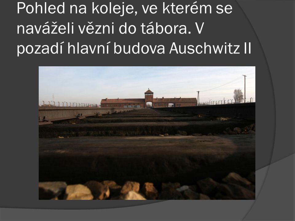 Pohled na koleje, ve kterém se naváželi vězni do tábora