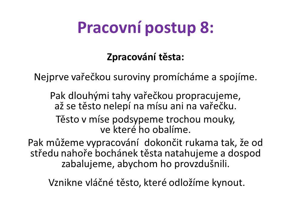 Pracovní postup 8: