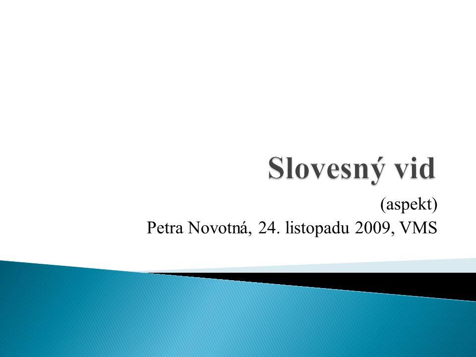 (aspekt) Petra Novotná, 24. listopadu 2009, VMS