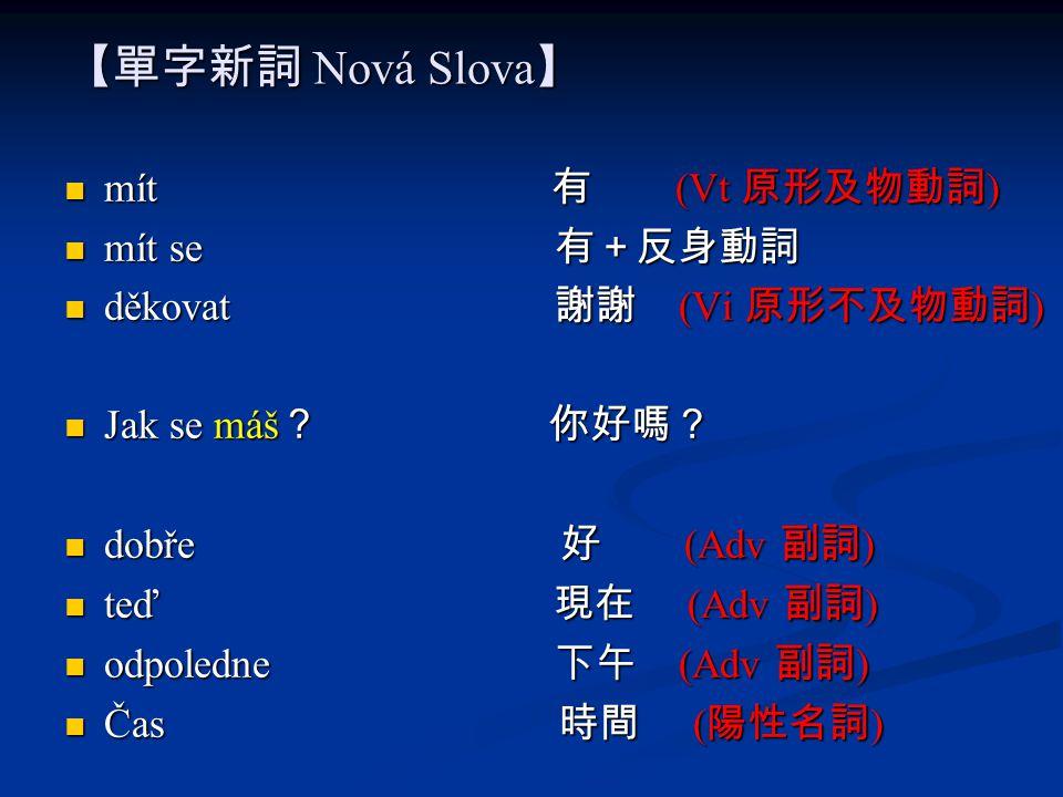 【單字新詞 Nová Slova】 mít 有 (Vt 原形及物動詞) mít se 有+反身動詞