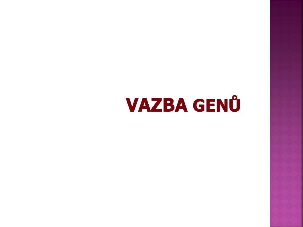 VAZBA GENů