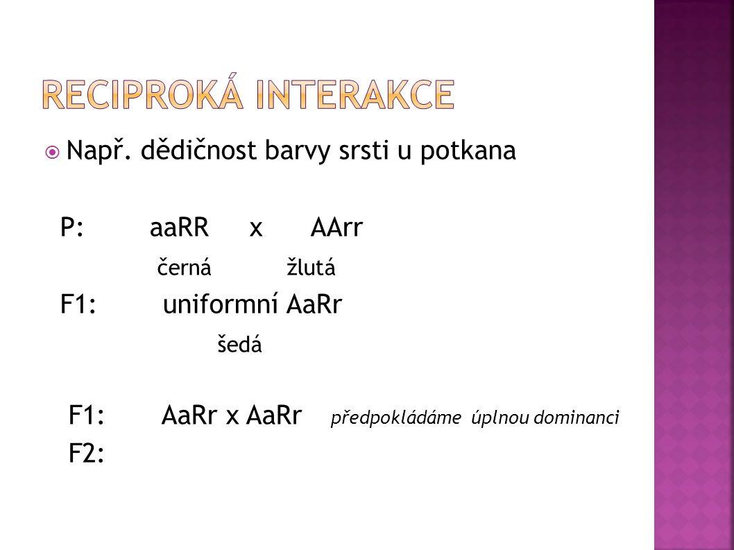 Reciproká interakce Např. dědičnost barvy srsti u potkana