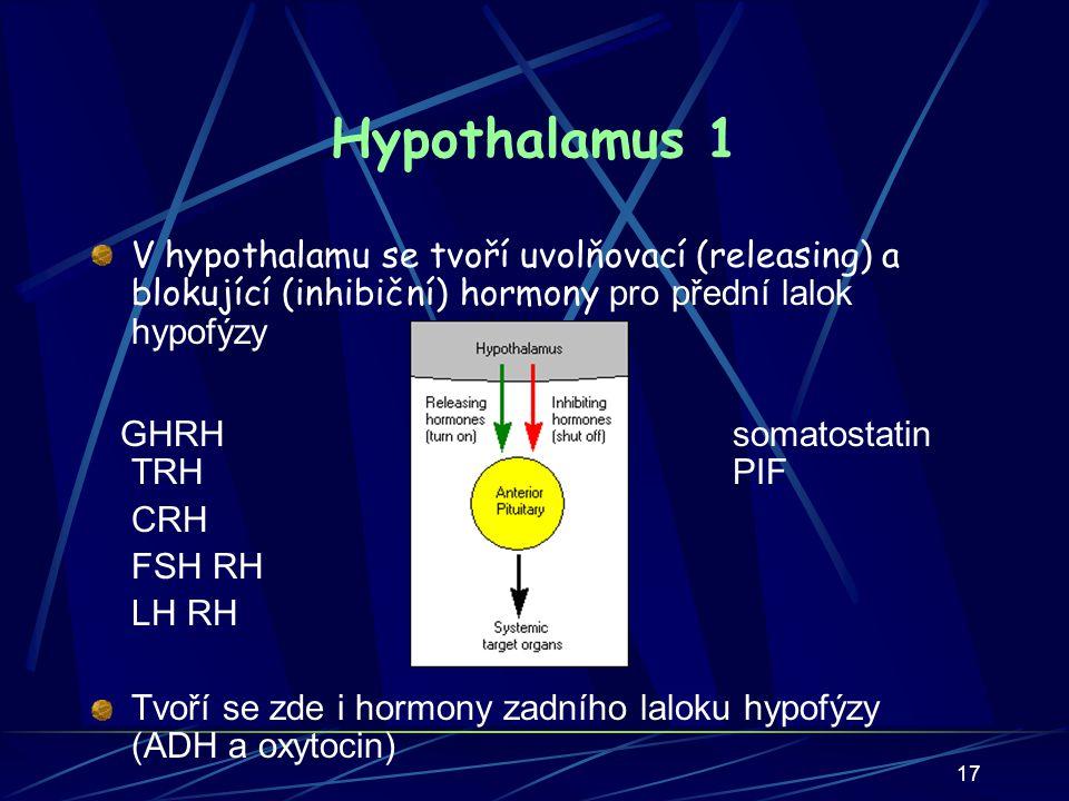 Hypothalamus 1 V hypothalamu se tvoří uvolňovací (releasing) a blokující (inhibiční) hormony pro přední lalok hypofýzy.