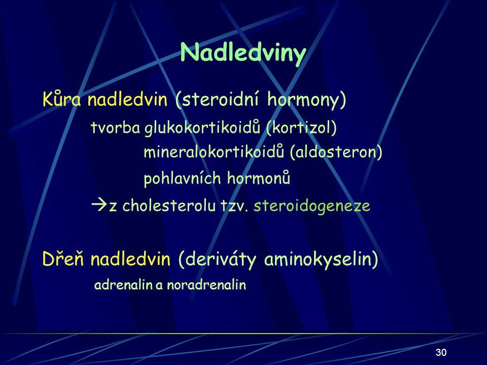 Nadledviny Kůra nadledvin (steroidní hormony)