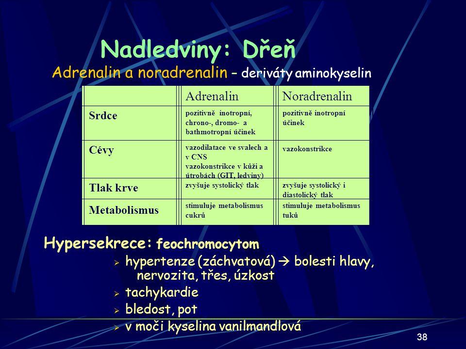 Nadledviny: Dřeň Adrenalin a noradrenalin – deriváty aminokyselin