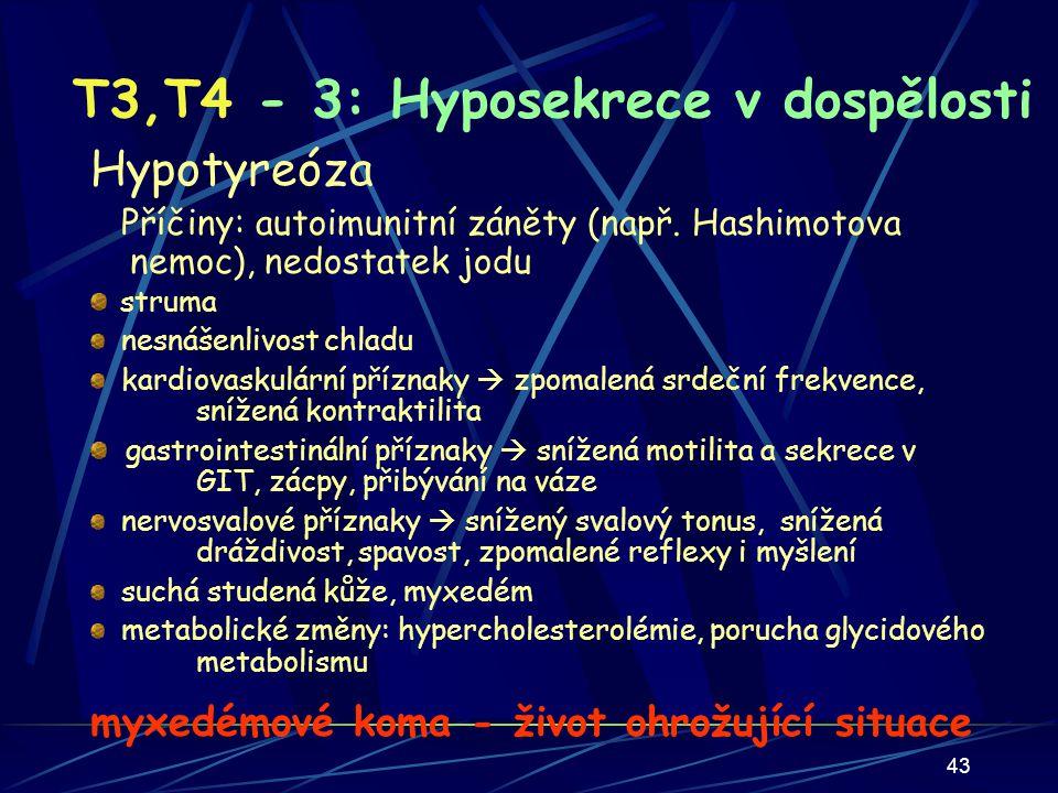 T3,T4 - 3: Hyposekrece v dospělosti