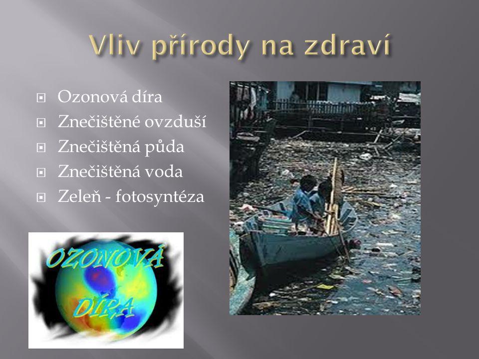 Vliv přírody na zdraví Ozonová díra Znečištěné ovzduší Znečištěná půda