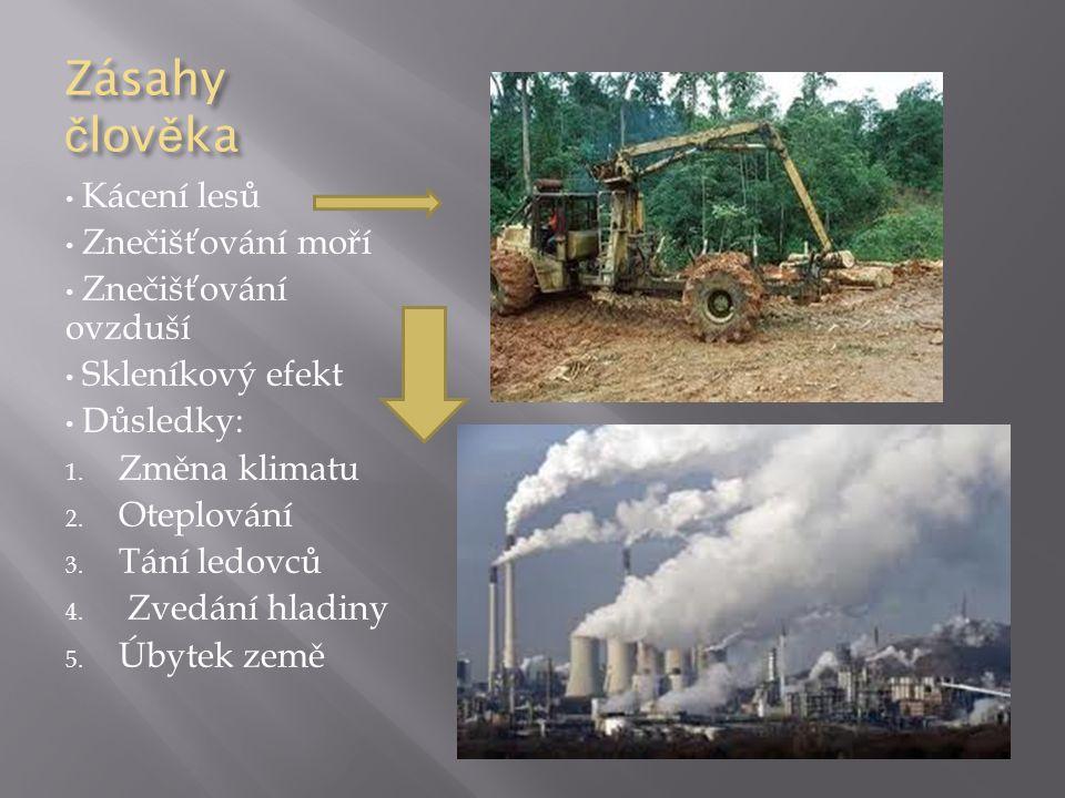 Zásahy člověka Kácení lesů Znečišťování moří Znečišťování ovzduší