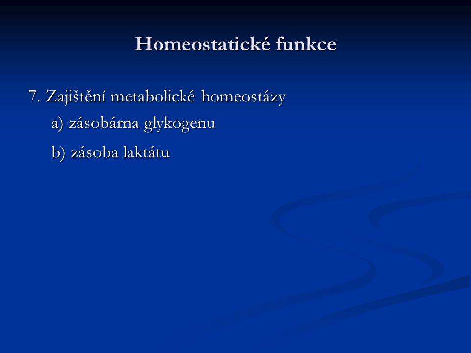 Homeostatické funkce 7. Zajištění metabolické homeostázy