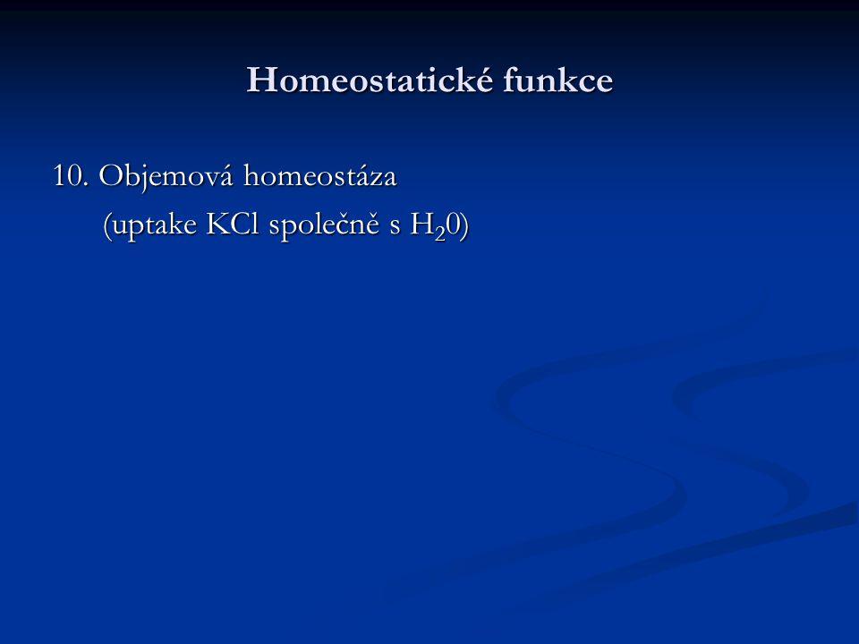 Homeostatické funkce 10. Objemová homeostáza