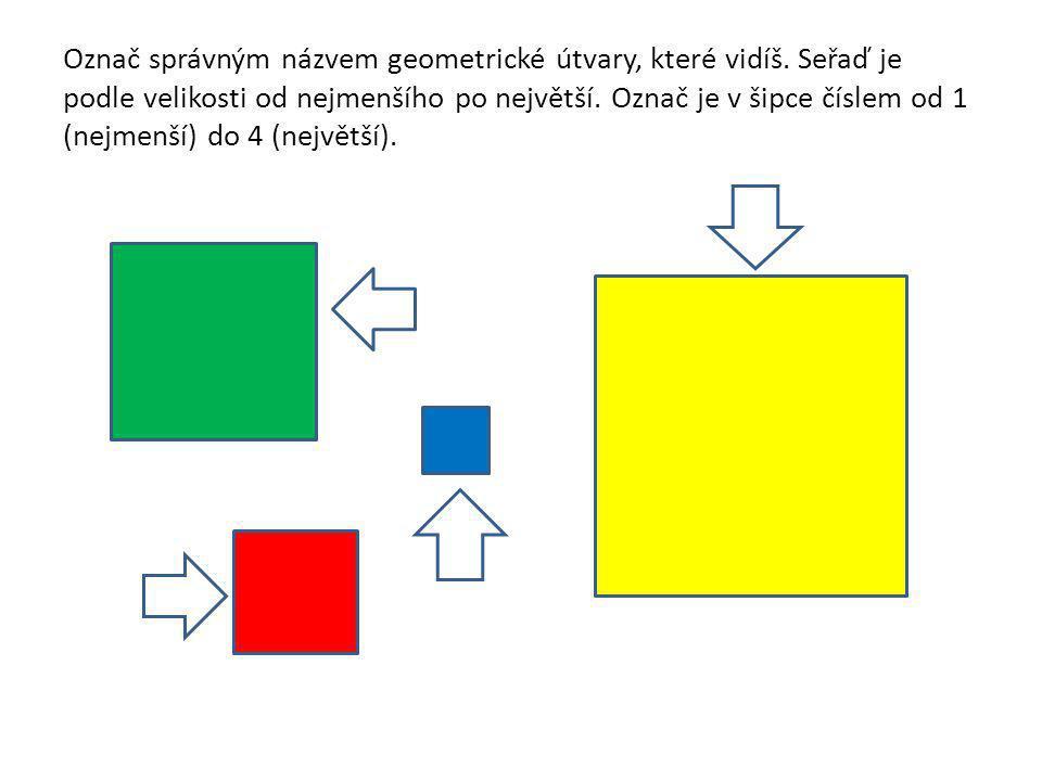 Označ správným názvem geometrické útvary, které vidíš