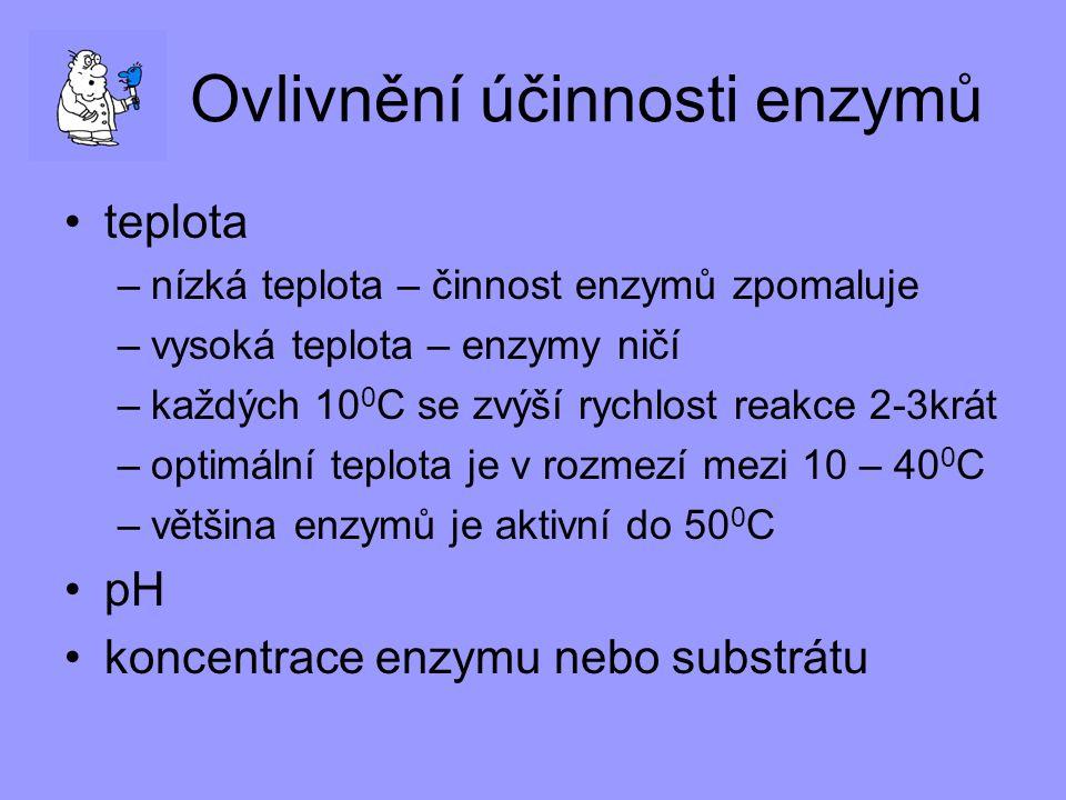 Ovlivnění účinnosti enzymů