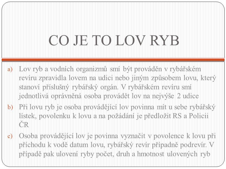 CO JE TO LOV RYB