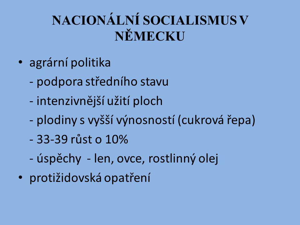 NACIONÁLNÍ SOCIALISMUS V NĚMECKU