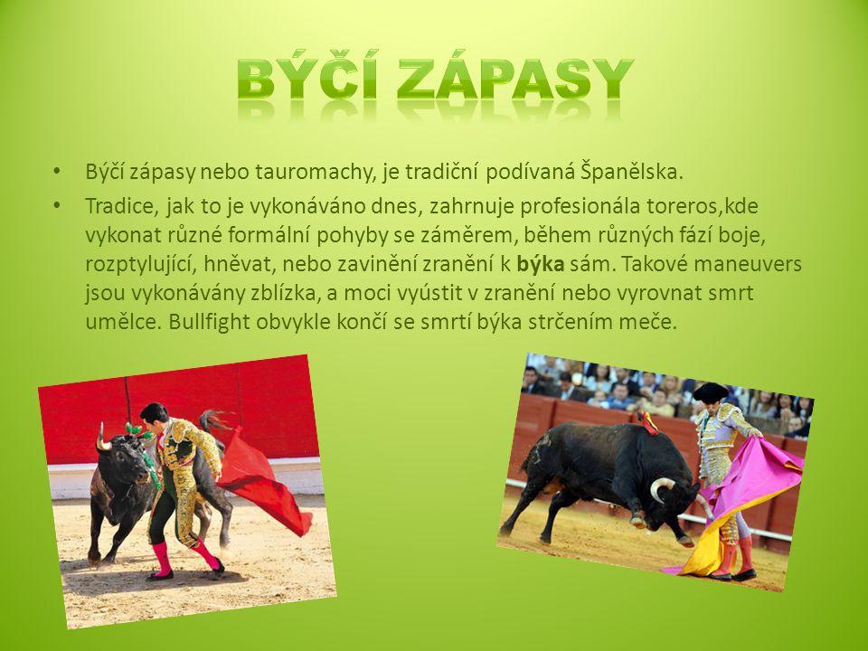 Býčí zápasy Býčí zápasy nebo tauromachy, je tradiční podívaná Španělska.