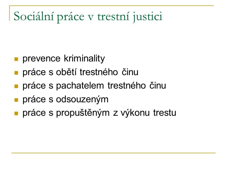 Sociální práce v trestní justici