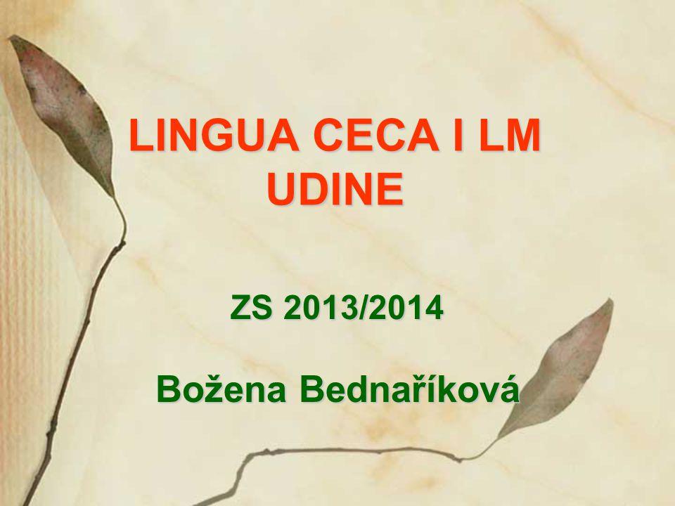 ZS 2013/2014 Božena Bednaříková