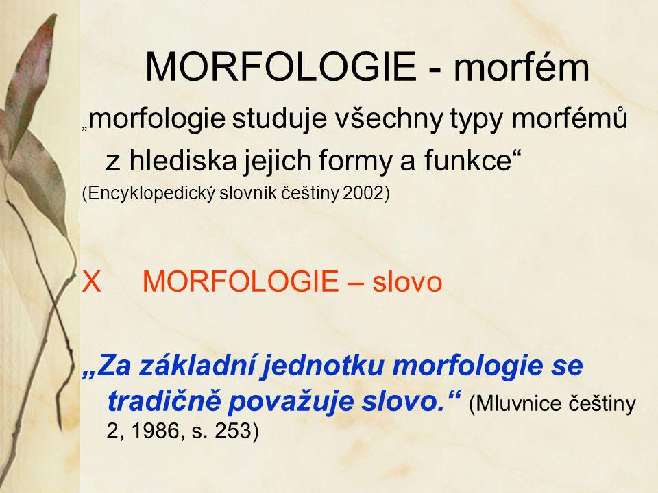 MORFOLOGIE - morfém z hlediska jejich formy a funkce