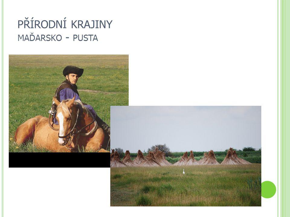 PŘÍRODNÍ KRAJINY maďarsko - pusta