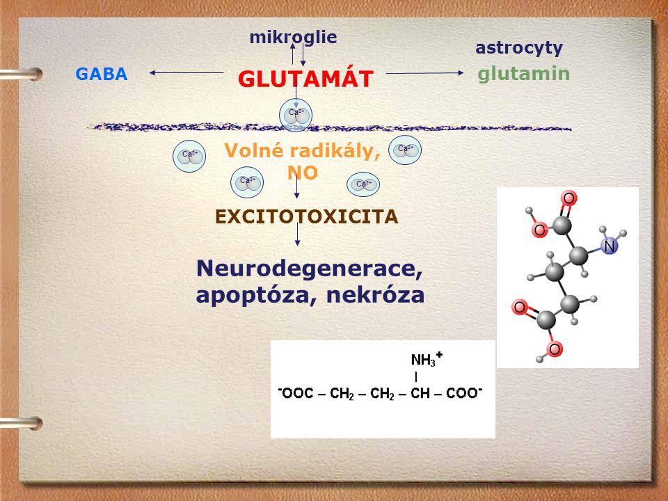 Neurodegenerace, apoptóza, nekróza