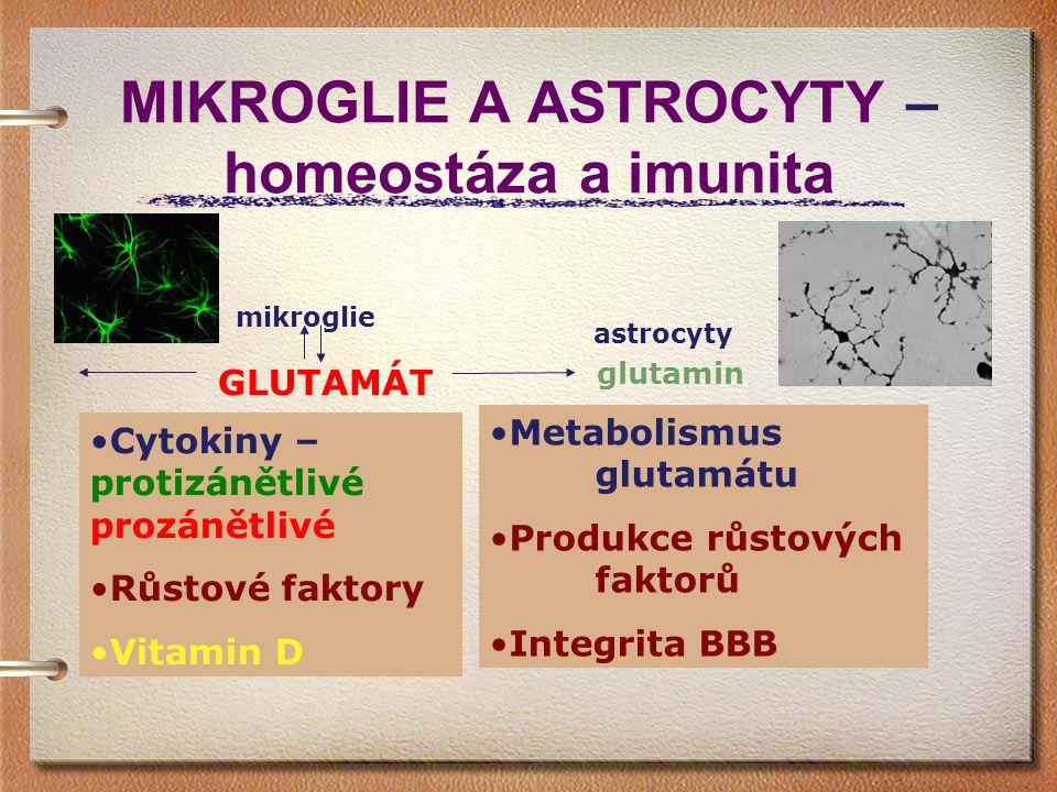 MIKROGLIE A ASTROCYTY – homeostáza a imunita