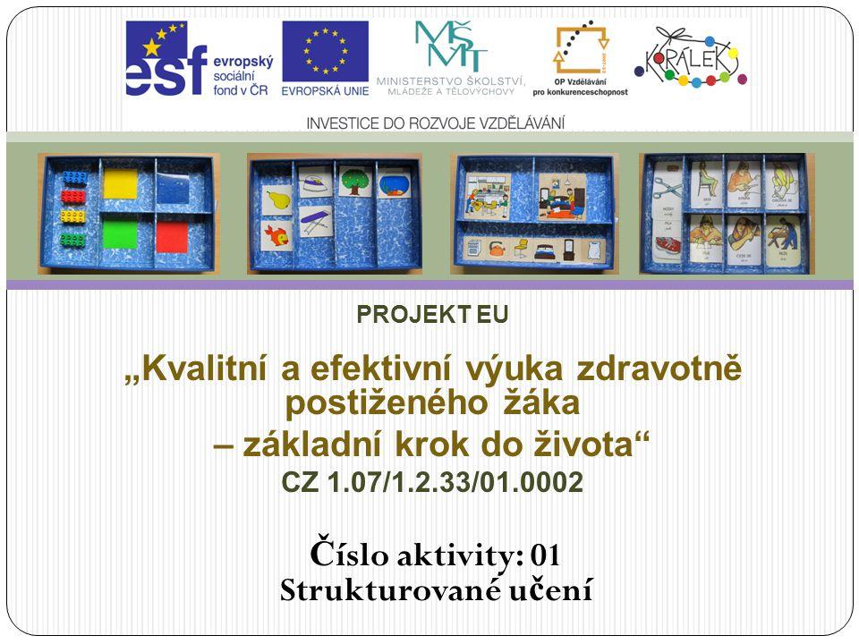 """Strukturované učení PROJEKT EU. """"Kvalitní a efektivní výuka zdravotně postiženého žáka. – základní krok do života"""