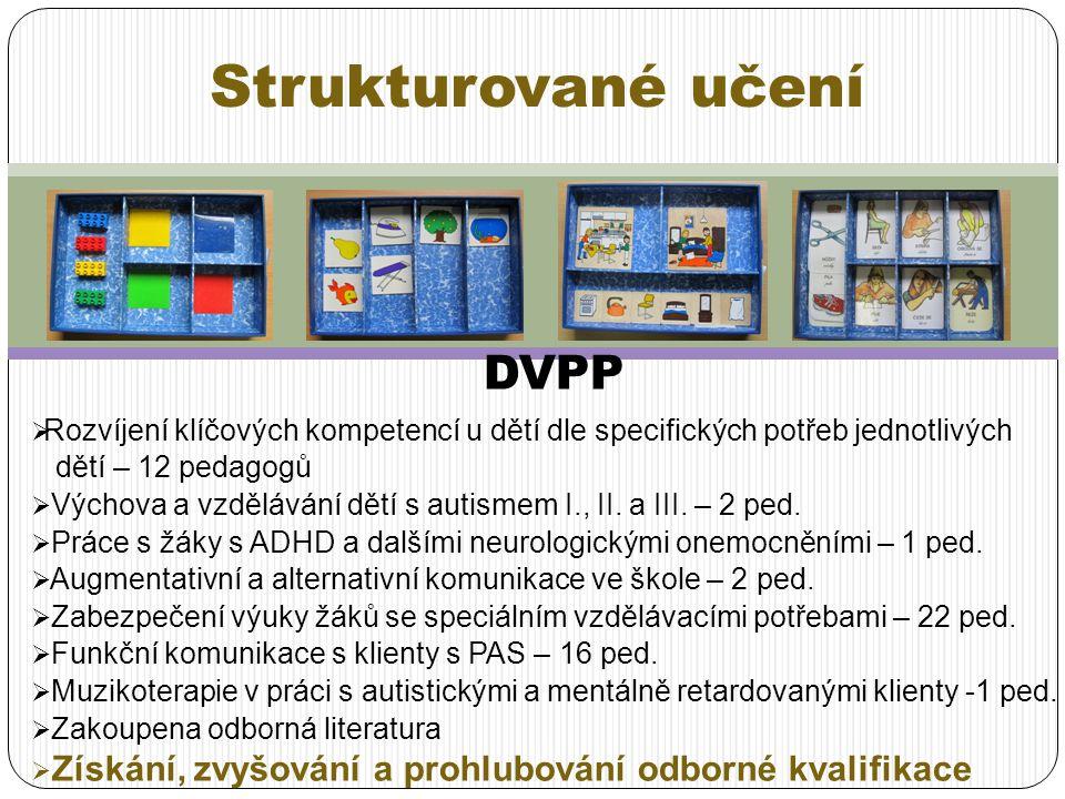 Strukturované učení DVPP