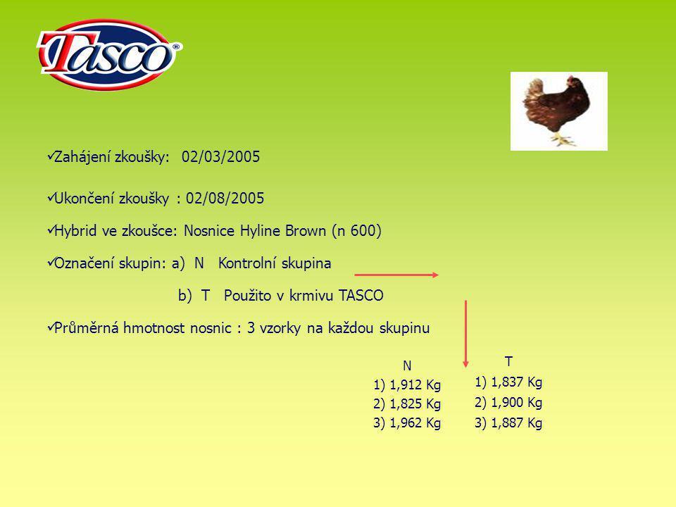 Hybrid ve zkoušce: Nosnice Hyline Brown (n 600)