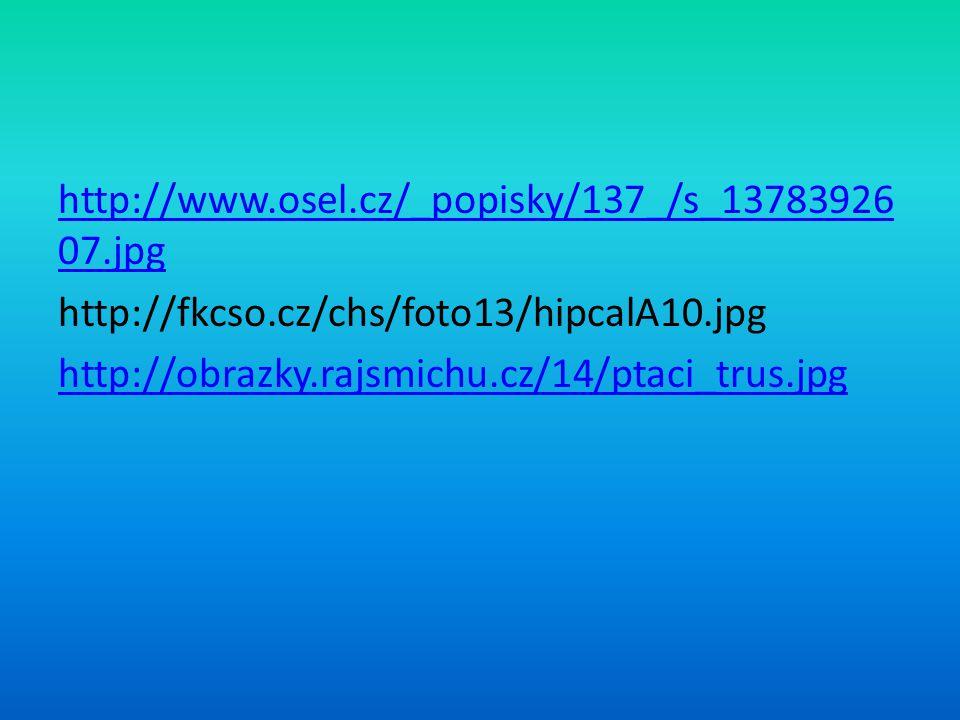 http://www. osel. cz/_popisky/137_/s_1378392607. jpg http://fkcso