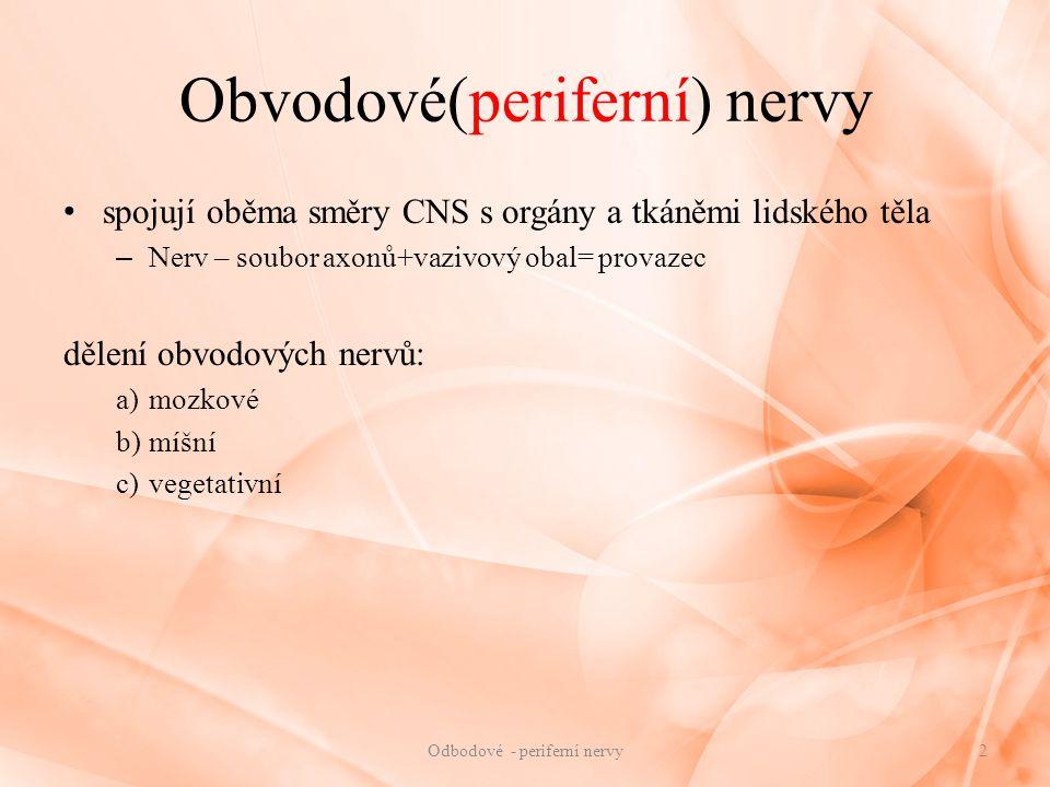 Obvodové(periferní) nervy
