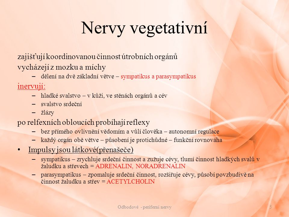 Odbodové - periferní nervy