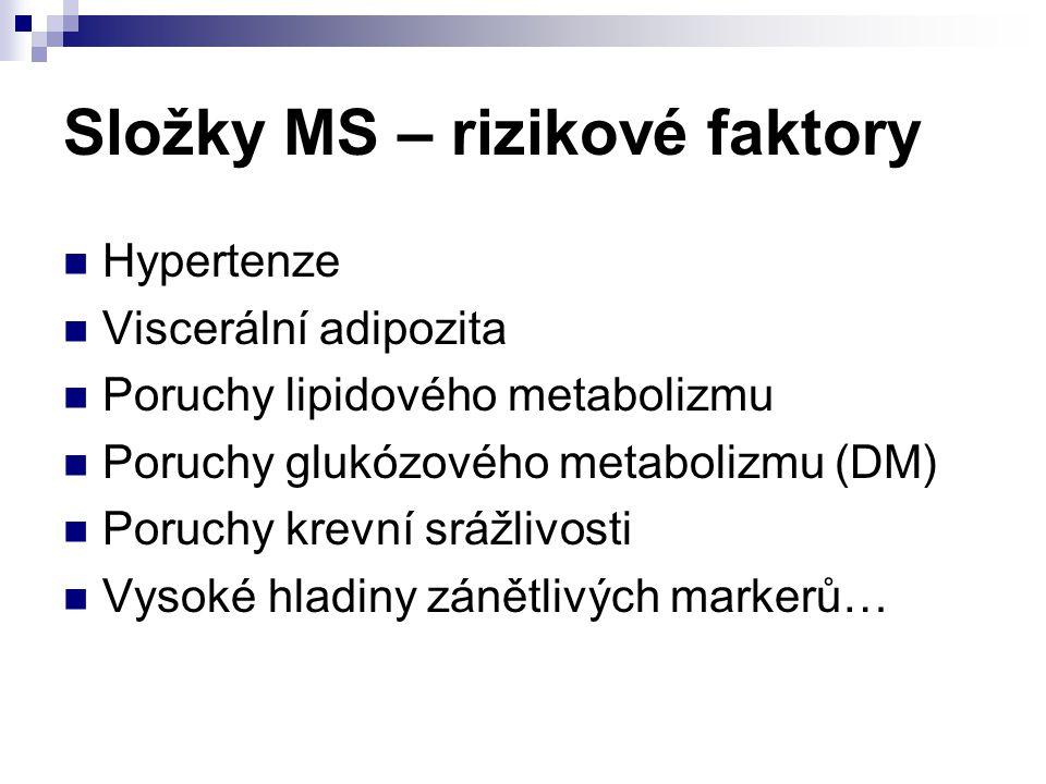 Složky MS – rizikové faktory