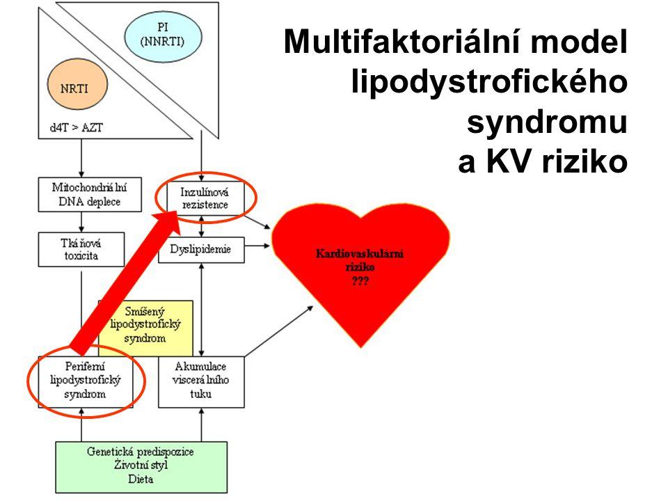 Multifaktoriální model lipodystrofického syndromu