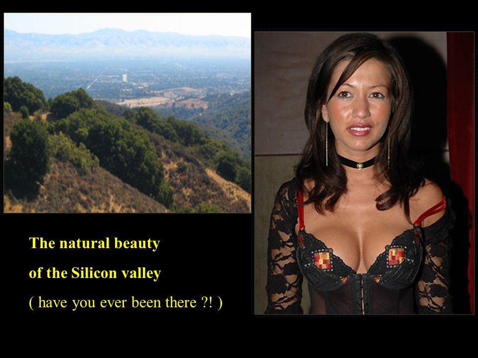 The natural beauty of the Silicon valley ( have you ever been there ! )