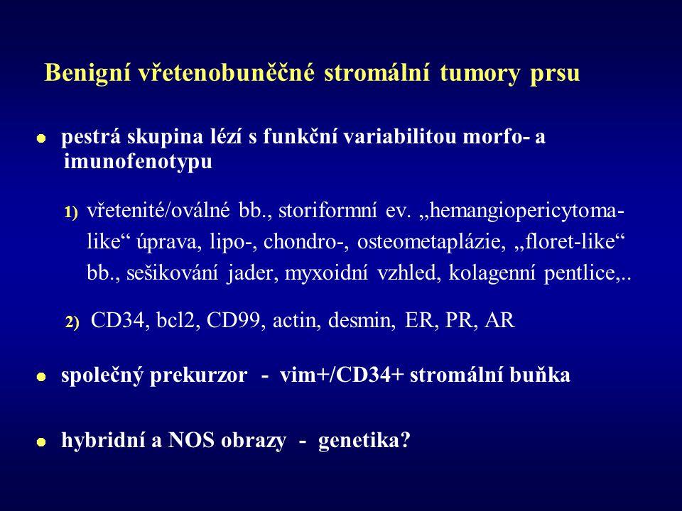Benigní vřetenobuněčné stromální tumory prsu