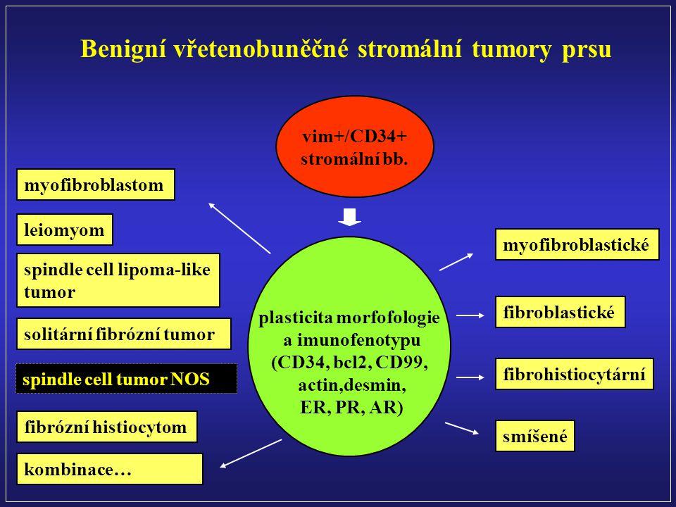 plasticita morfofologie