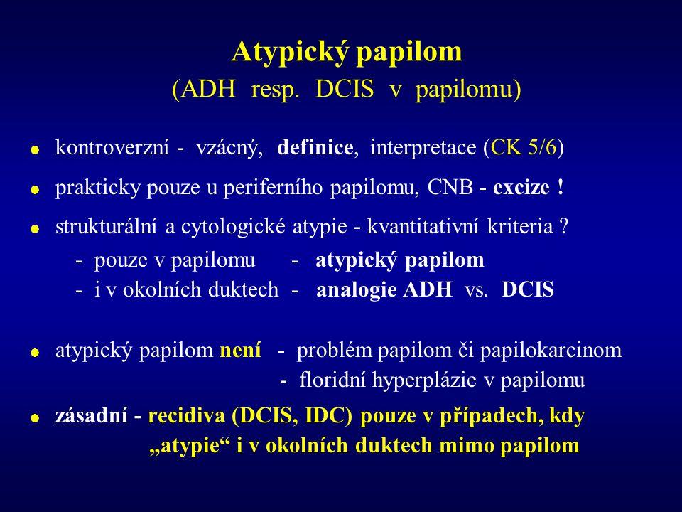 Atypický papilom (ADH resp. DCIS v papilomu)