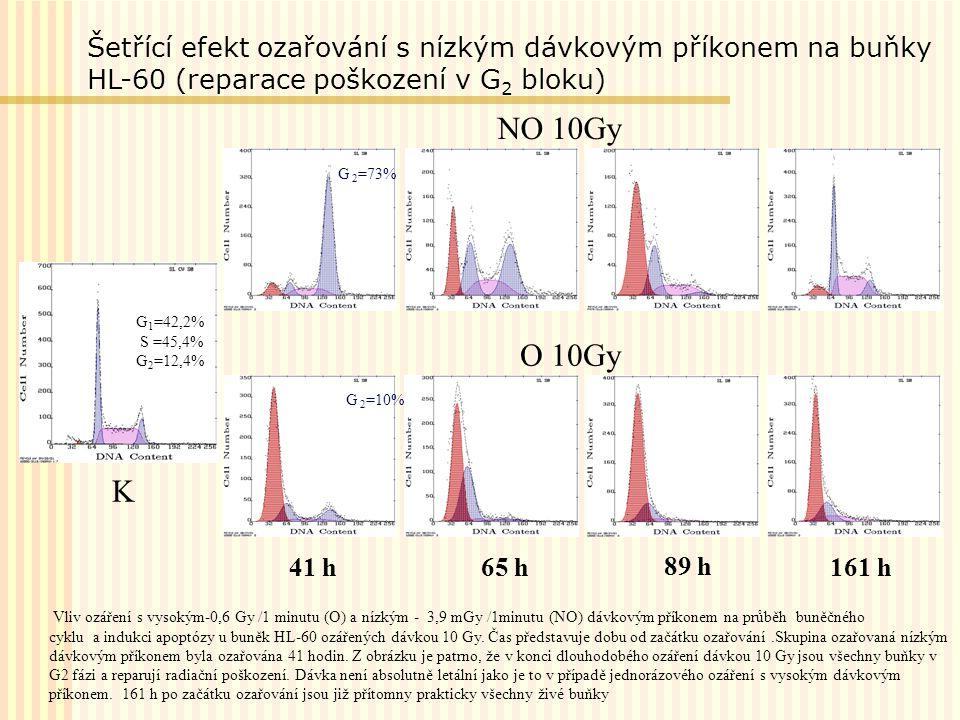 Šetřící efekt ozařování s nízkým dávkovým příkonem na buňky