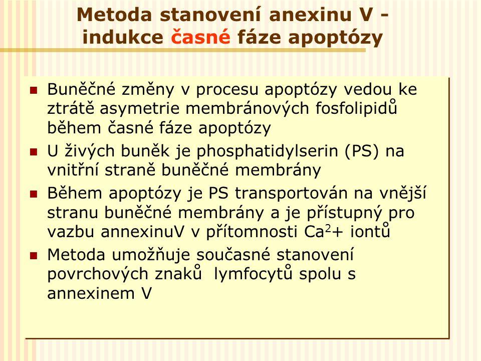 Metoda stanovení anexinu V - indukce časné fáze apoptózy