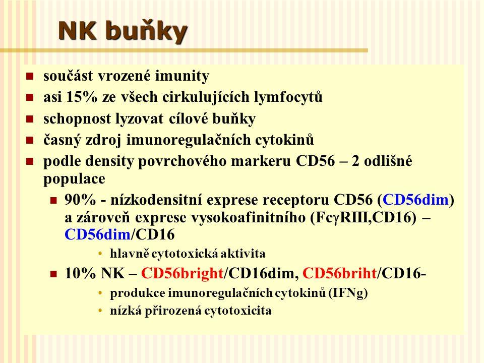 NK buňky součást vrozené imunity